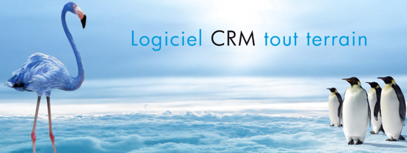 Review Blue note systems CRM: An innovative CRM which adapts to your environment - Appvizer