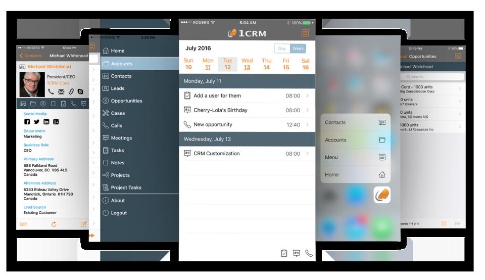 1CRM-screenshot-0