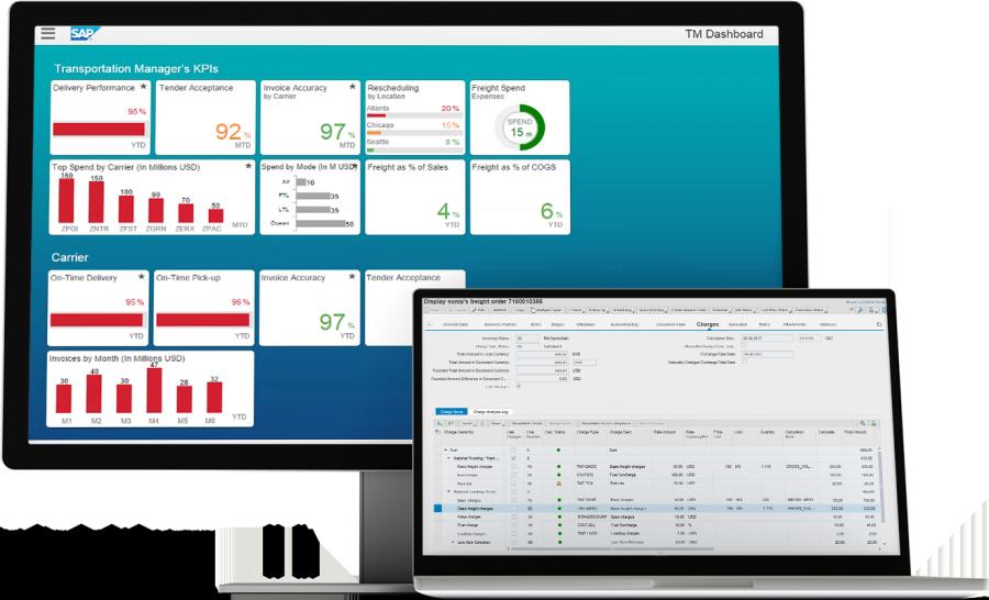 SAP Transport Management-Sap-dashboard