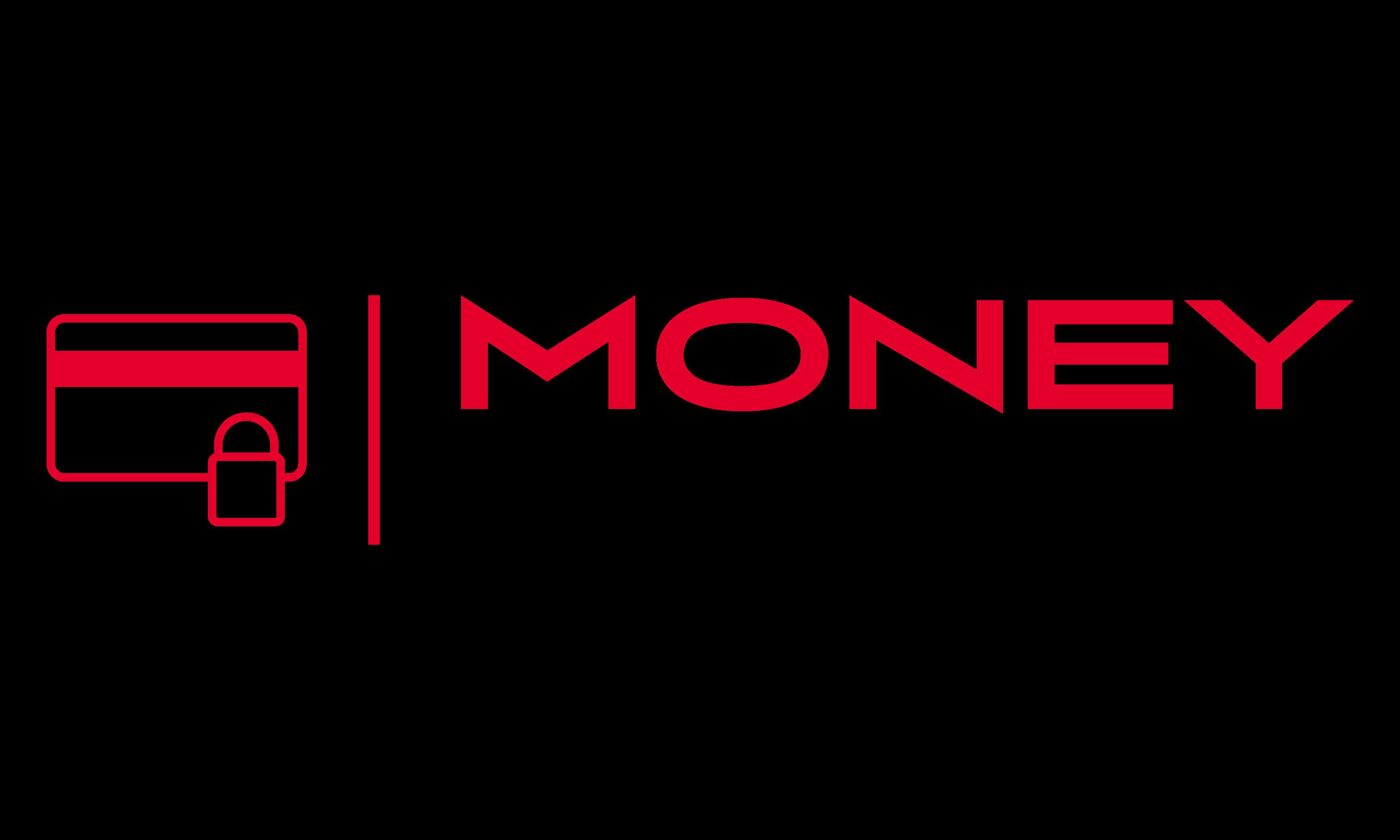 Review MoneyTigo.com: Universal payment gateway & for all - Appvizer
