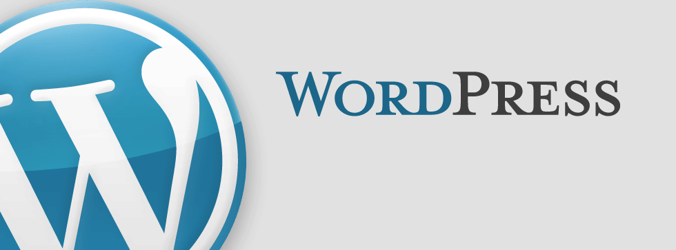 Review WordPress: Powers 28% of the internet - Appvizer